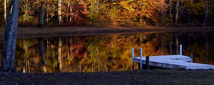 Pond during the Fall