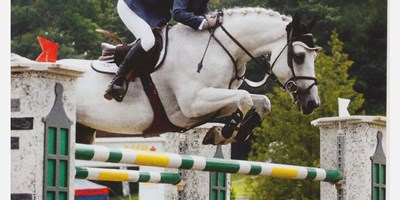 Visit the Bromont Olympic Equestrian Park
