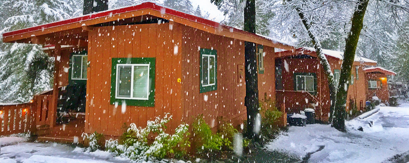 Deluxe Cabins 1, 2, and 3 in winter