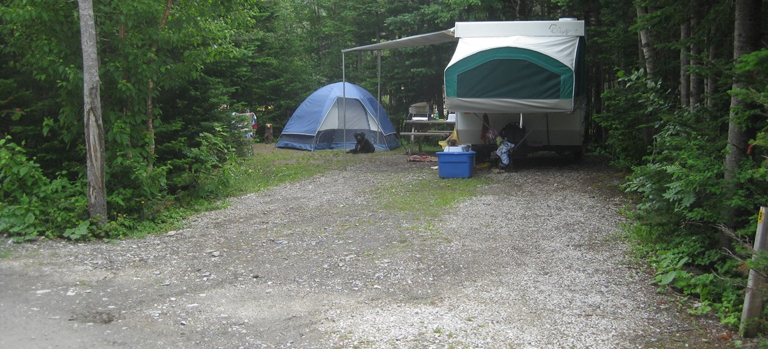 Level site, great for tenting or RV.