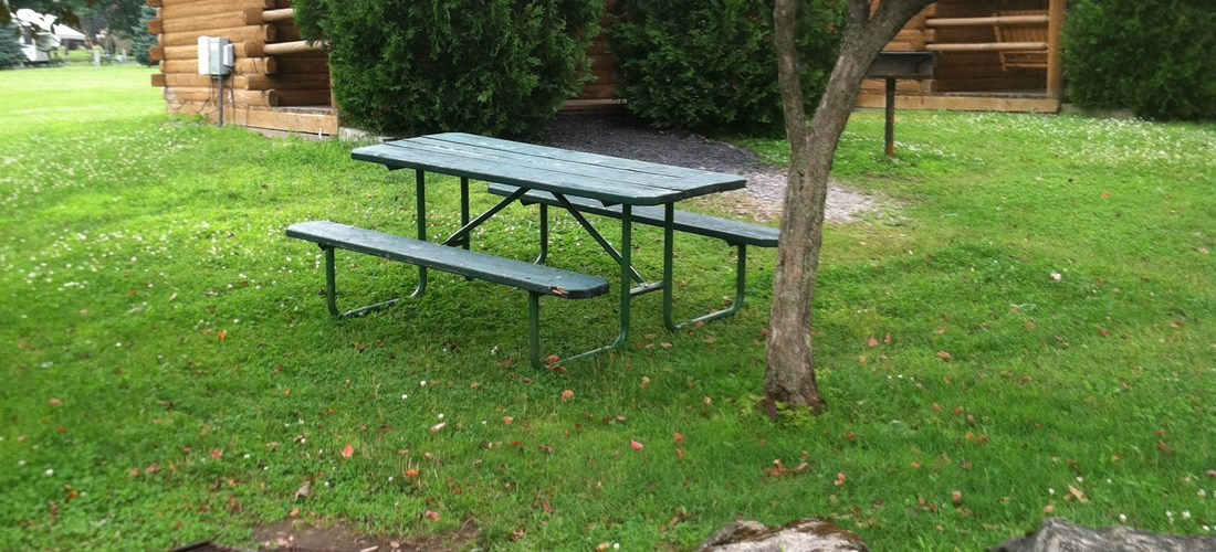 Camping Cabin picnic table and fire ring