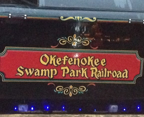 Okefenokee Swamp Annual Light Show