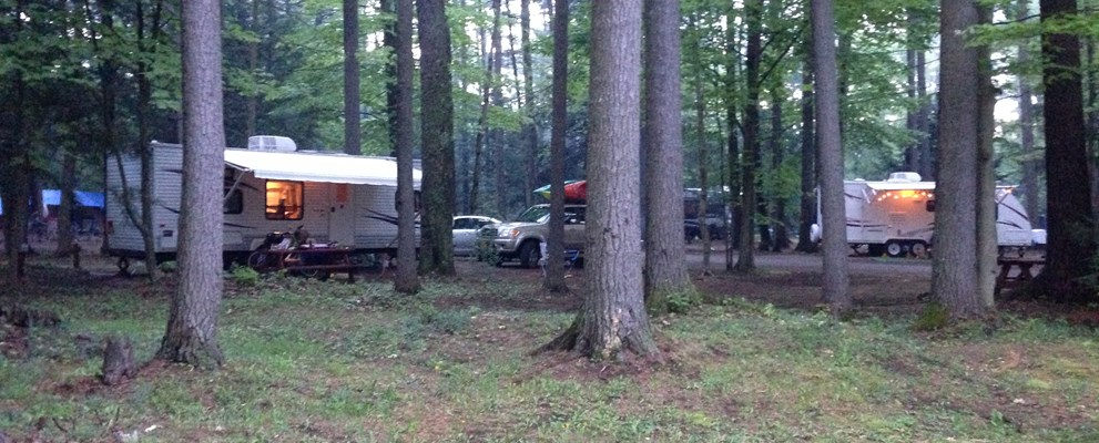 Very Shaded RV site