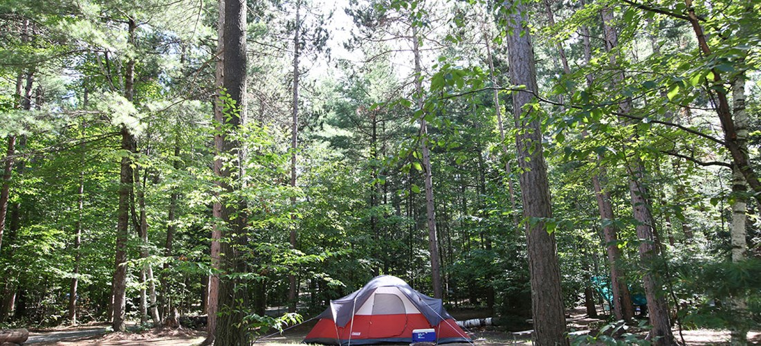 Enjoy our wooded tent sites in the beautiful Adirondack Mtns. at   Lake Placid/Whiteface Mtn. KOA