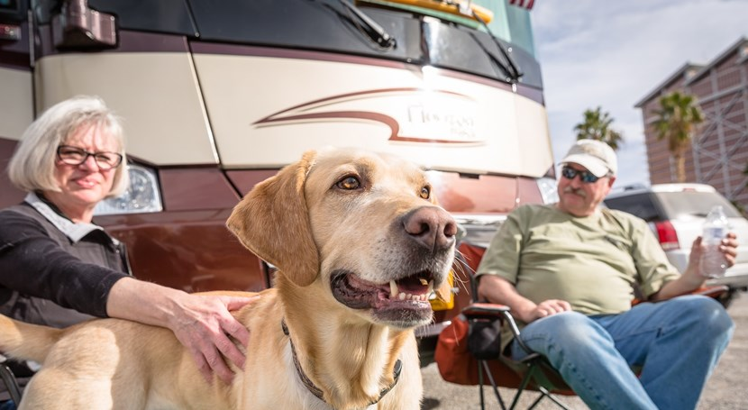 Snowbird RV with your pets
