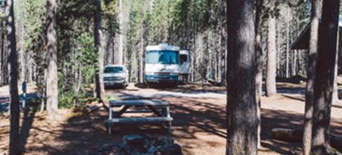 RV Park - Typical Back-in Site