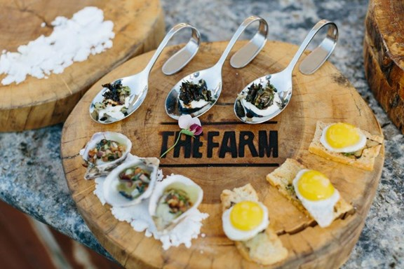 Farm-to-Table Dinner Experience