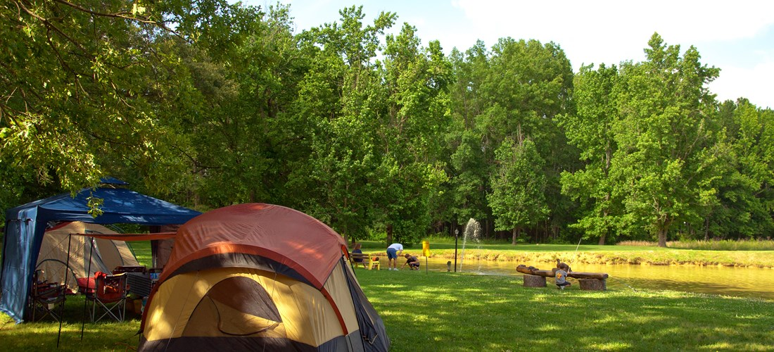 Tent sites with view of the pond!