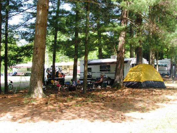 Our wooded pull through full hookup campsites!