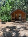 Welcome to the Mount Shasta City KOA