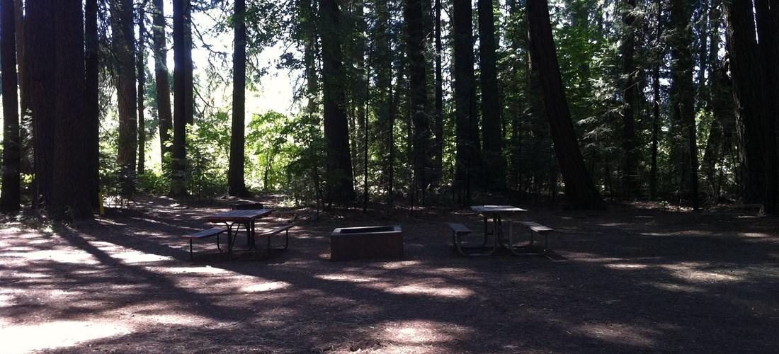 Site 88 / View of tables & fire ring