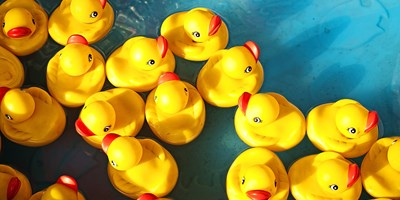 22nd Annual Pawcatuck River Duck Race