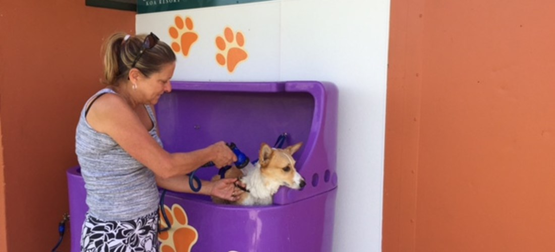 Does Fido need a bath?   We really are pet friendly.
