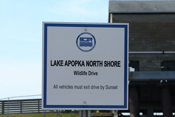 Lake Apopka Wildlife Drive