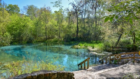 Itchetucknee Springs - Florida's Best State Park (TheDiscoverer.com)