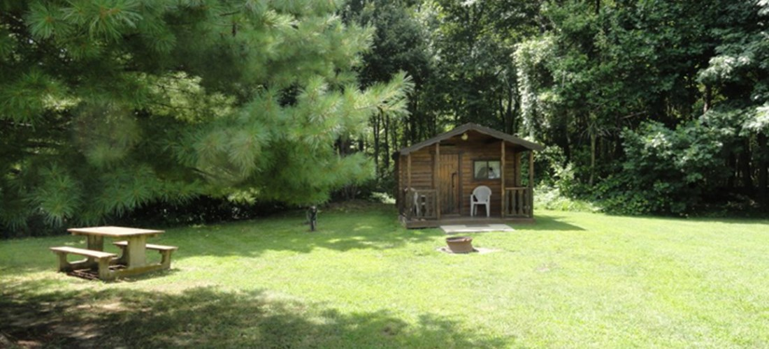 Cute primitive cabin in a shaded area. Great for a family of four.