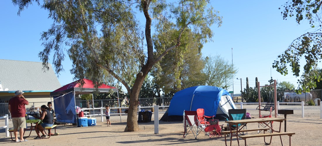 All our tent sites are close to the restrooms and free WiFi.