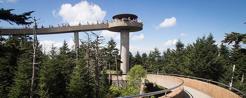 Hike to Clingman's Dome.