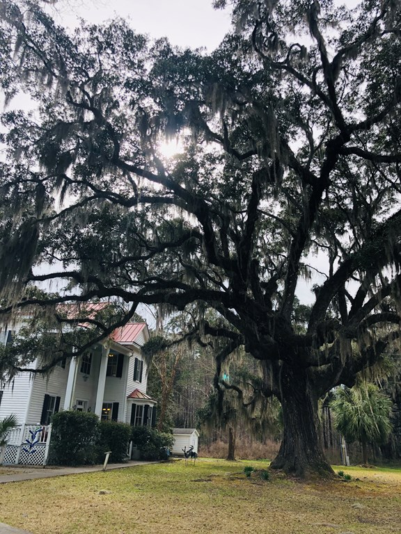 SC Lowcountry Calendar of Events