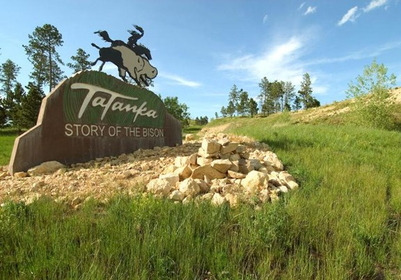 Tatanka: Story of the Bison