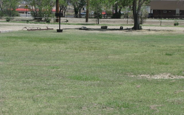 Grassy sites for individuals or groups