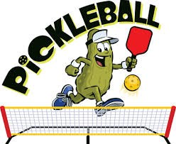 Pickle Ball New for 2019