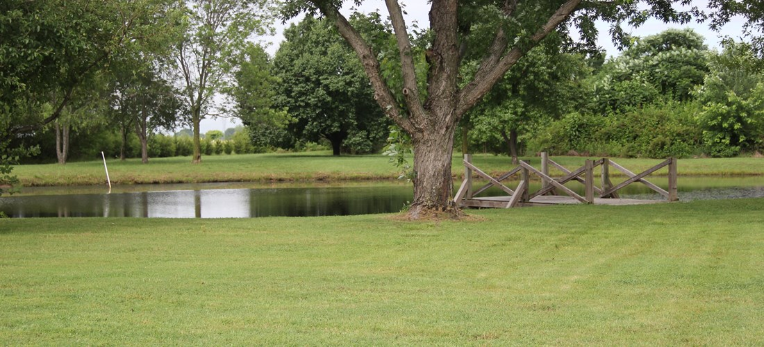 Enjoy a peaceful evening by our serene, stocked pond.