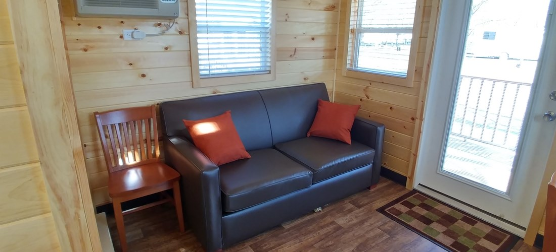 Comfortable pull-out couch