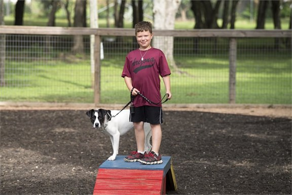 Your dogs will be happy in our Dog Park!
