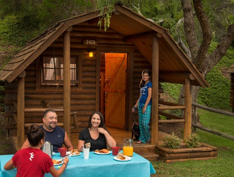 Camping Cabin - Save 30% Photo