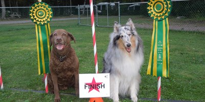 CARO Rally Obedience Dog Trial