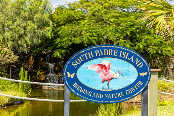 South Padre Island Birding, Nature Center, & Alligator Sanctuary