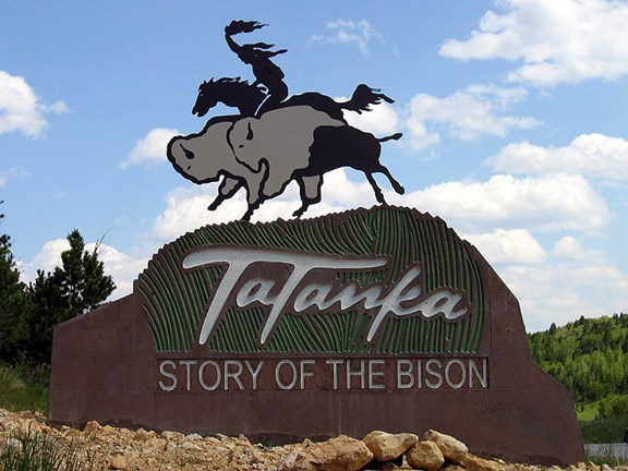 Tatanka - The Story of the Bison