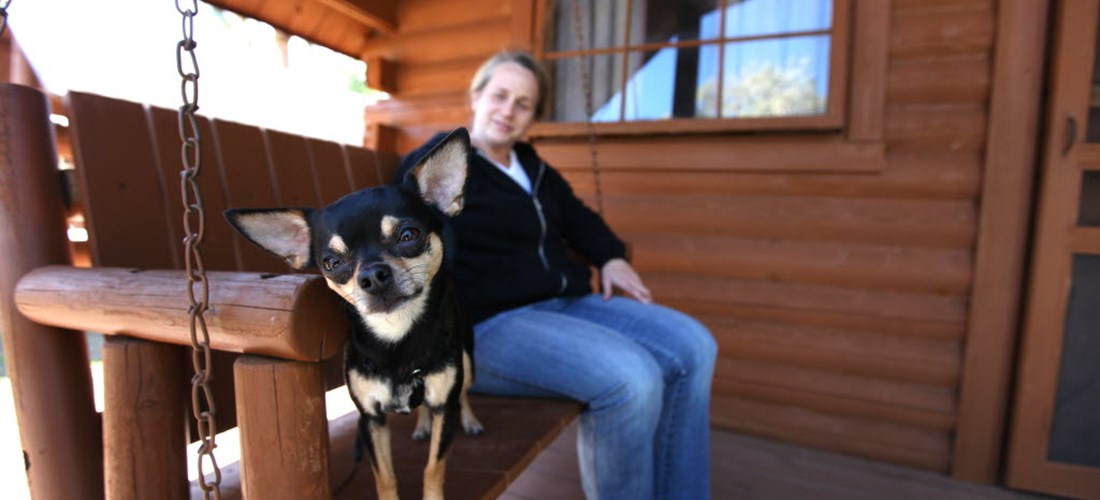 Pet Friendly Cabins Available