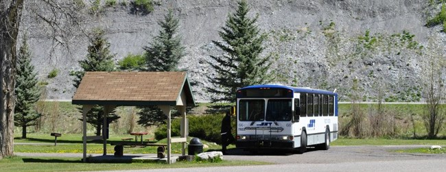 FREE Bus into Steamboat Springs