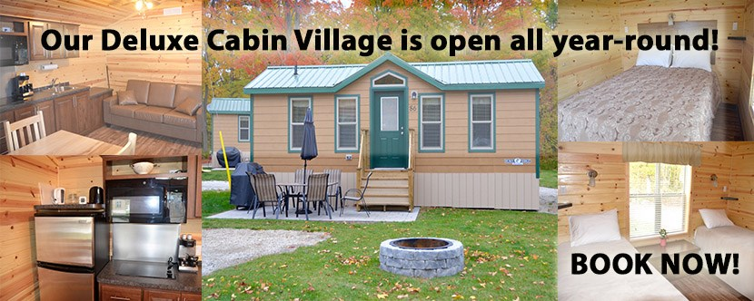 Try out our Deluxe Cabins!
