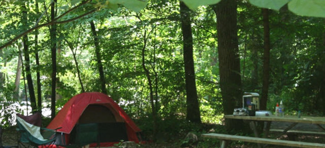 Primitive Tent Site-1