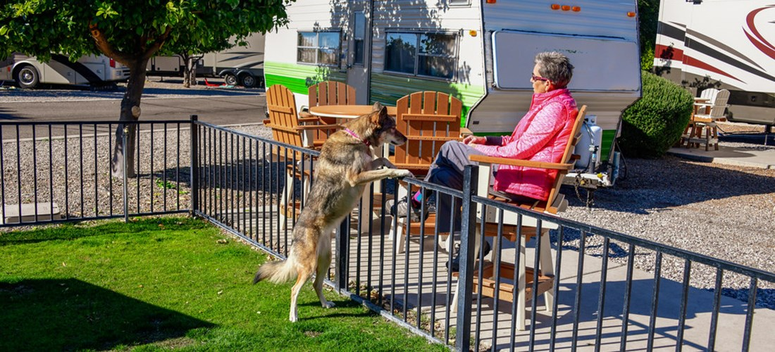 Back-in RV Sites with dog area