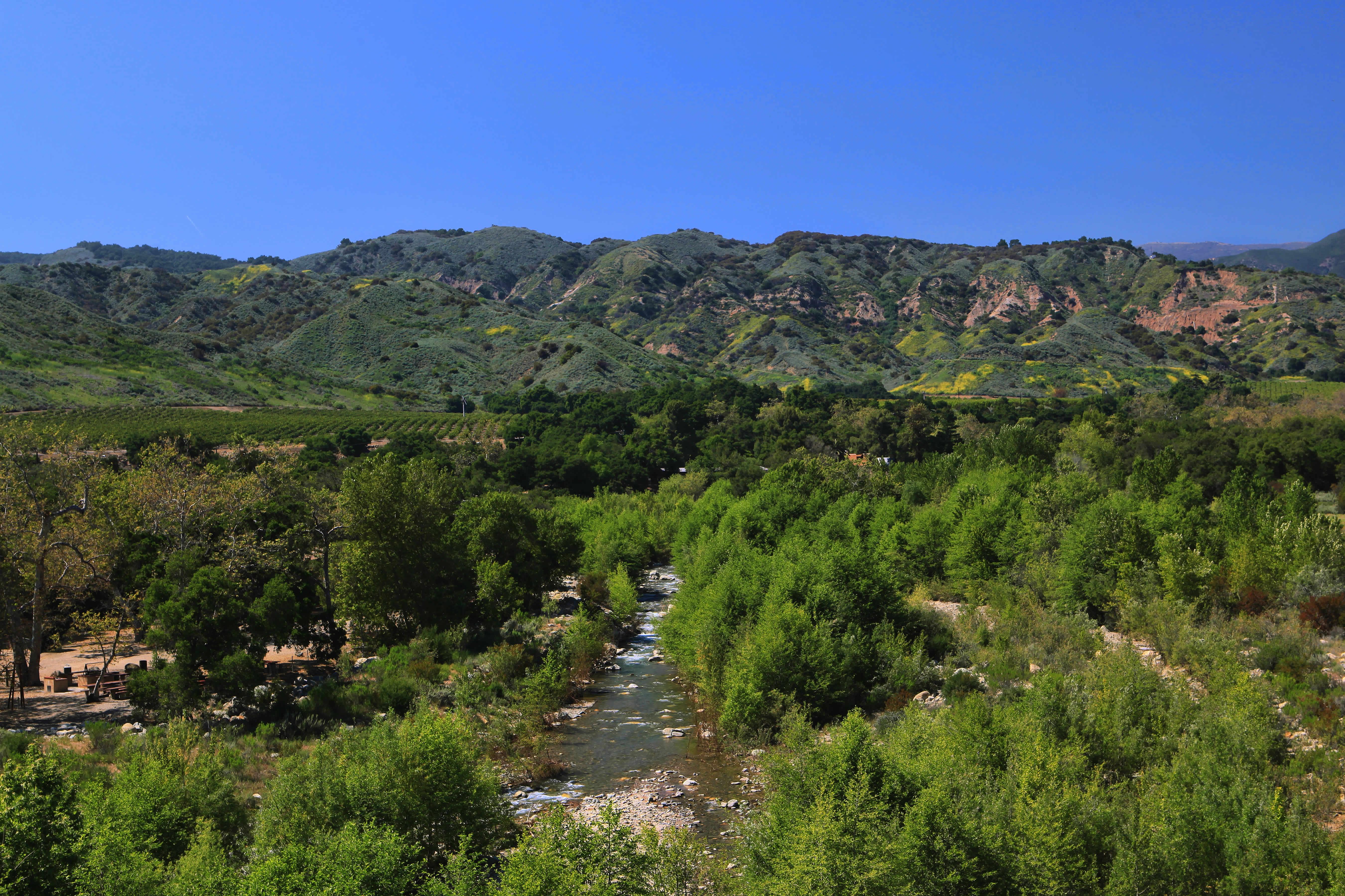 Santa Paula California Campground Ventura Ranch Koa