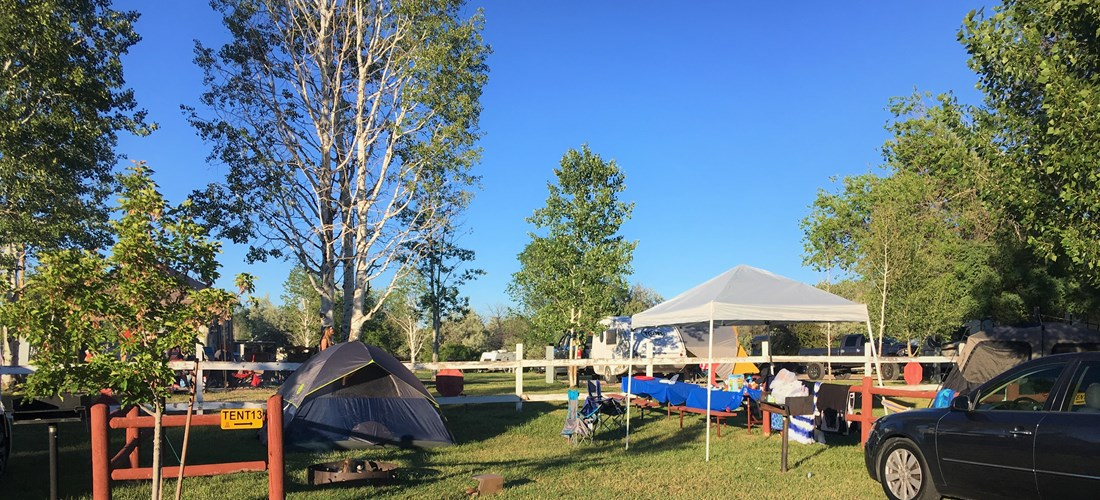 Even our standard tent sites offer plenty of space for a family to enjoy their camping adventure.
