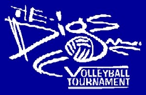 DIGS Volleyball Tournament