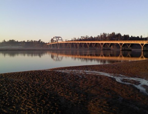 You can take a walk across this beautiful bridge into the little town of Waldport. Have lunch, do a little shopping, or play on the bay beach.