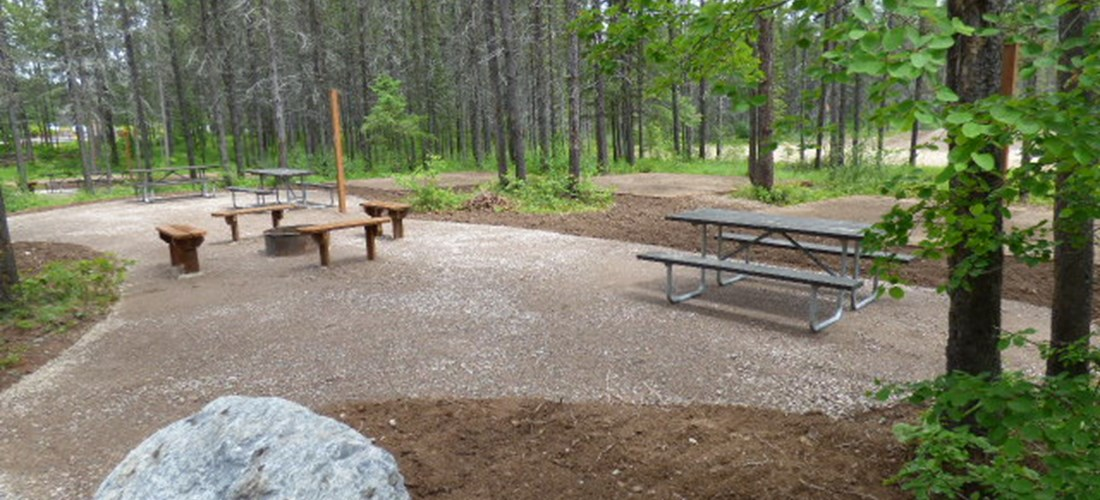 Friends and Family Tent Sites