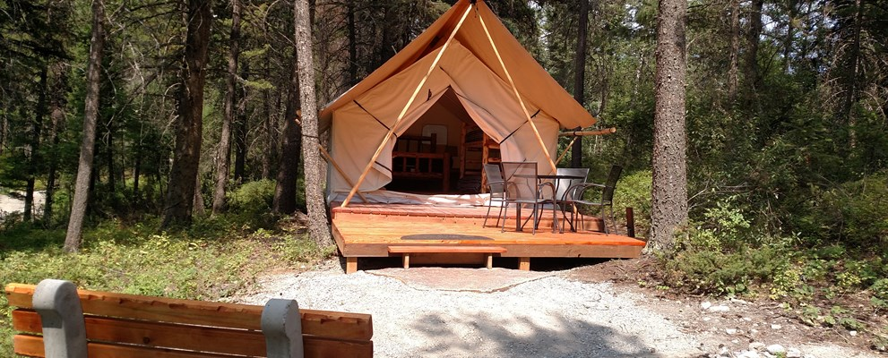 Modern tent in the woods