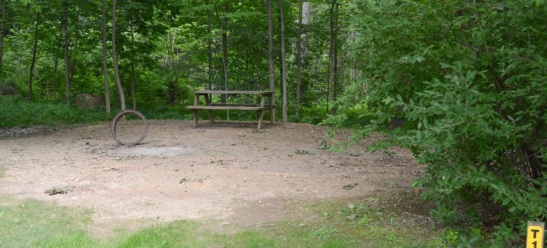 Back to nature. Enjoy these wooded sites in a secluded area of the park, but not far from facilities. Picnic tables & fire rings are located at the site for your convenience. Water is available.
