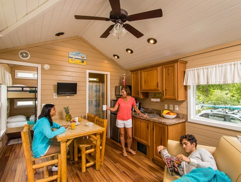 Deluxe Cabins - $99 on Monday Photo