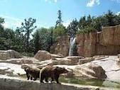 Assiniboia park zoo