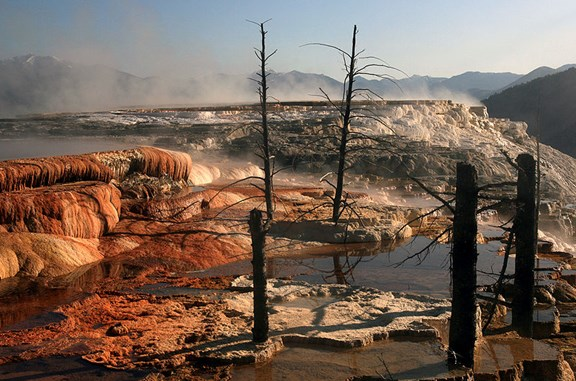 Mammoth Hot Springs - 49 miles from Yellowstone KOA